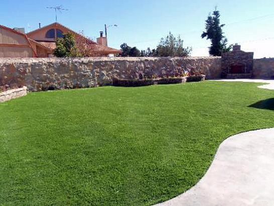 Artificial Grass Photos: Artificial Grass Carpet Puyallup, Washington Landscape Ideas, Backyard Designs