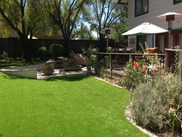 Artificial Grass Photos: Artificial Grass Carpet West Side Highway, Washington Landscape Rock, Backyard Ideas