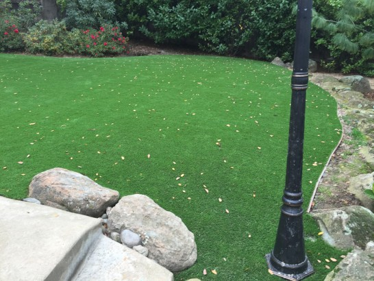 Artificial Grass Photos: Artificial Grass Lake Shore, Washington Landscape Ideas, Backyard Landscaping Ideas