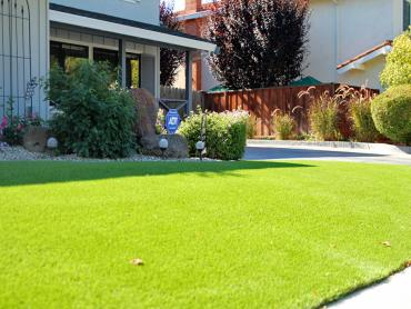 Artificial Grass Photos: Artificial Grass Trout Lake, Washington Lawns, Landscaping Ideas For Front Yard