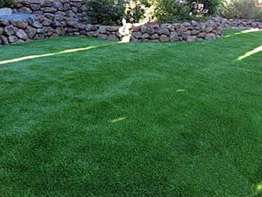 Artificial Grass Photos: Artificial Lawn Oroville, Washington Landscape Photos, Backyard Ideas