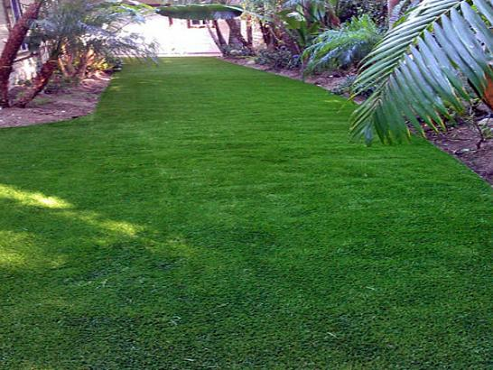 Artificial Grass Photos: Artificial Lawn Pullman, Washington Roof Top, Backyard Ideas