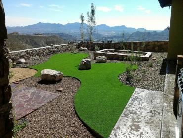 Artificial Grass Photos: Artificial Turf Cost Castle Rock, Washington Design Ideas, Backyard Landscape Ideas