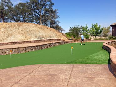 Artificial Grass Photos: Artificial Turf Cost Rocky Point, Washington Backyard Playground, Backyards