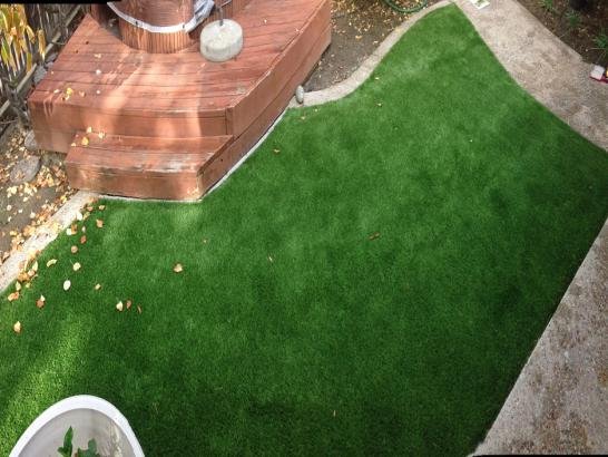 Artificial Grass Photos: Artificial Turf Cost Walla Walla, Washington Rooftop, Backyard Designs