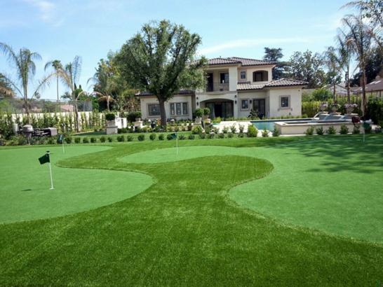 Artificial Grass Photos: Artificial Turf Installation Marlin, Washington Lawn And Garden, Landscaping Ideas For Front Yard