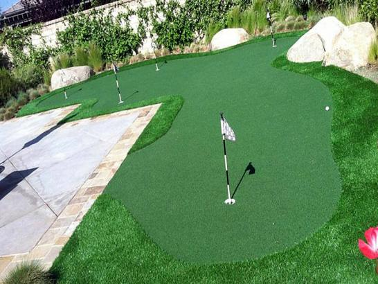 Artificial Grass Photos: Artificial Turf Issaquah, Washington Indoor Putting Greens, Backyard