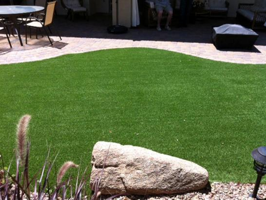 Artificial Grass Photos: Artificial Turf Naselle, Washington Lawn And Garden, Backyards