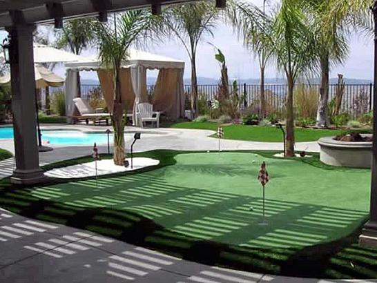 Artificial Grass Photos: Artificial Turf Orchards, Washington Artificial Putting Greens, Swimming Pool Designs