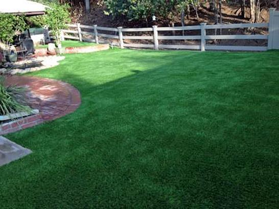 Artificial Grass Photos: Artificial Turf Tri-Cities, Washington Landscaping, Backyards