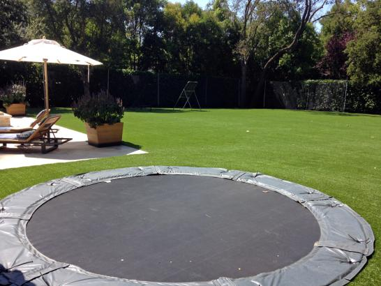 Artificial Grass Photos: Best Artificial Grass Bay Center, Washington Landscaping, Backyards