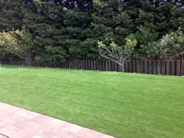 Artificial Grass Photos: Best Artificial Grass Coulee City, Washington Lawn And Garden, Beautiful Backyards