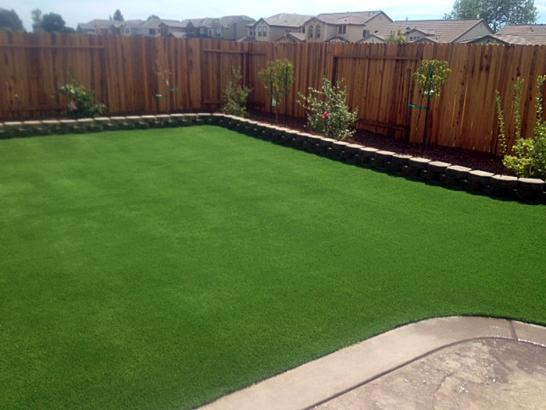 Artificial Grass Photos: Fake Grass Carpet Glacier, Washington Design Ideas, Backyard Landscaping