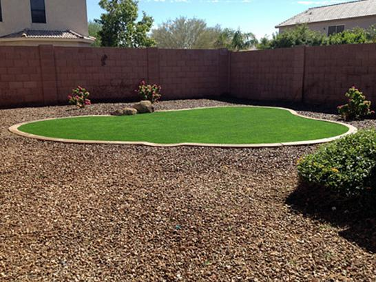 Artificial Grass Photos: Fake Grass Carpet Mountlake Terrace, Washington Gardeners, Backyard