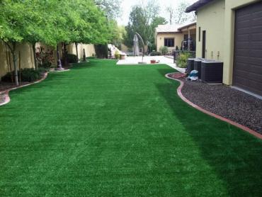Fake Grass Carpet SeaTac, Washington Gardeners, Backyard artificial grass