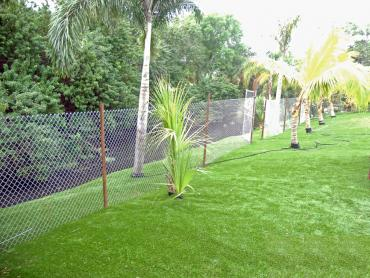 Artificial Grass Photos: Fake Grass Gleed, Washington Backyard Playground, Backyard Landscaping Ideas