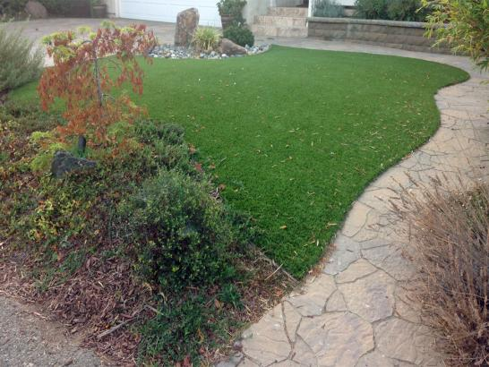 Artificial Grass Photos: Fake Grass Marysville, Washington Backyard Playground, Backyard Designs