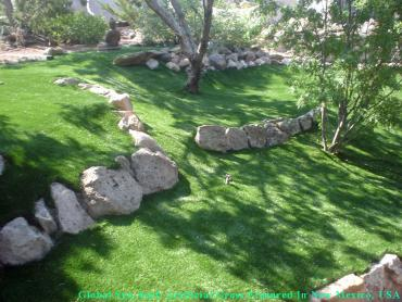Artificial Grass Photos: Fake Grass Yakima, Washington Garden Ideas, Commercial Landscape