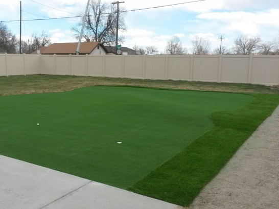 Artificial Grass Photos: Fake Lawn West Side Highway, Washington Putting Green Turf, Backyard Makeover