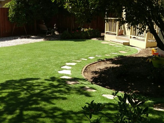 Fake Turf Esperance, Washington Backyard Playground, Backyards artificial grass