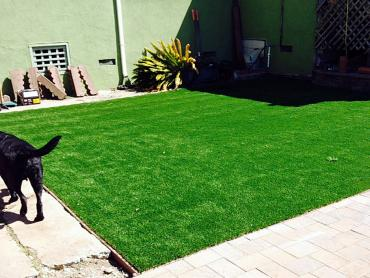 Artificial Grass Photos: Fake Turf Yarrow Point, Washington Landscape Rock, Backyard Ideas