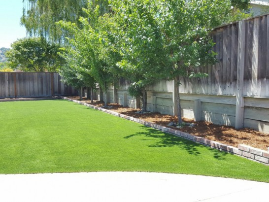 Grass Carpet Ahtanum, Washington Landscaping Business, Backyard Ideas artificial grass