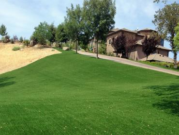 Artificial Grass Photos: Grass Carpet Brier, Washington Landscape Photos, Front Yard Landscaping
