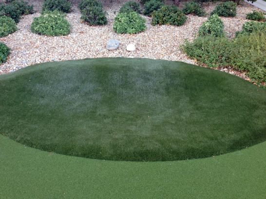 Artificial Grass Photos: Grass Carpet Chehalis Village, Washington Home Putting Green