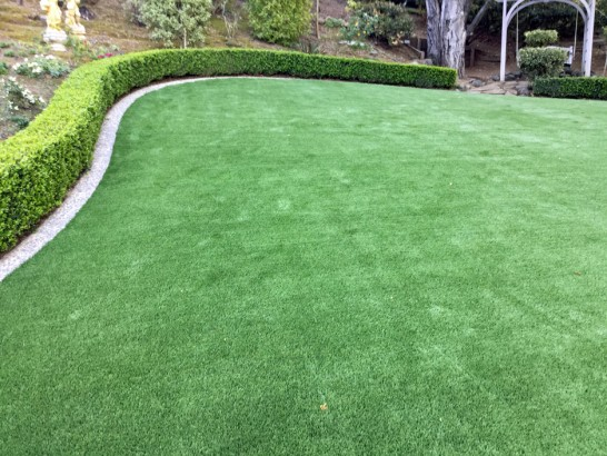 Artificial Grass Photos: Grass Carpet Normandy Park, Washington Lawn And Garden, Small Backyard Ideas