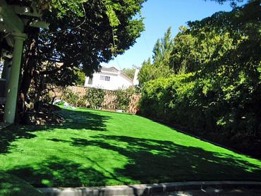 Artificial Grass Photos: Grass Installation Port Angeles, Washington Landscape Ideas, Backyard Garden Ideas