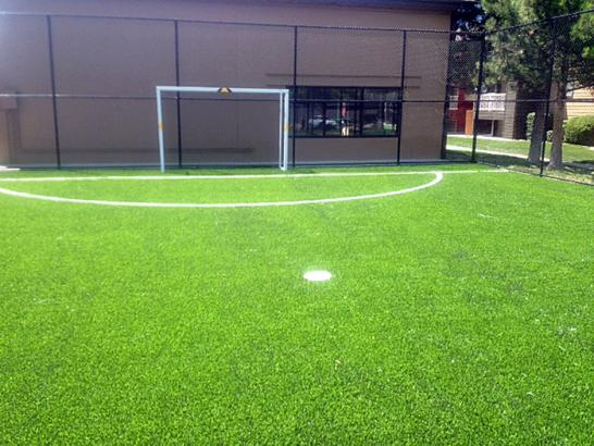 Artificial Grass Photos: Grass Turf Lebam, Washington Landscaping Business