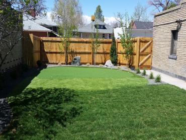 Artificial Grass Photos: Grass Turf Snoqualmie, Washington Putting Green Carpet, Backyard Landscaping