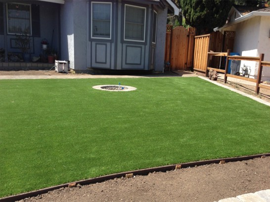 Artificial Grass Photos: Grass Turf Yelm, Washington Home And Garden, Backyards
