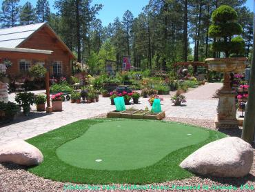 Green Lawn Spokane, Washington Outdoor Putting Green, Backyard Designs artificial grass