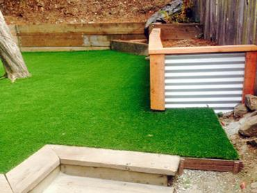 Artificial Grass Photos: How To Install Artificial Grass Winlock, Washington Lawn And Landscape, Backyard Landscape Ideas