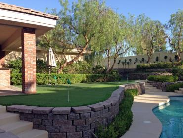 Artificial Grass Photos: Lawn Services Maple Heights-Lake Desire, Washington Lawn And Garden, Backyards