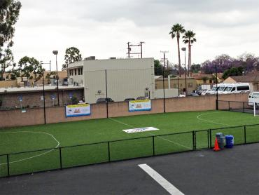 Artificial Grass Photos: Lawn Services Tukwila, Washington Football Field, Commercial Landscape
