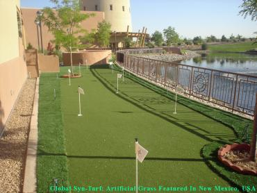 Artificial Grass Photos: Lawn Services Vancouver, Washington Diy Putting Green, Small Backyard Ideas