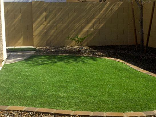Artificial Grass Photos: Outdoor Carpet Auburn, Washington Landscaping, Backyard Makeover