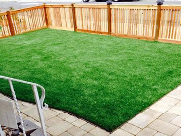 Artificial Grass Photos: Outdoor Carpet Kittitas, Washington Roof Top,  Backyard Designs