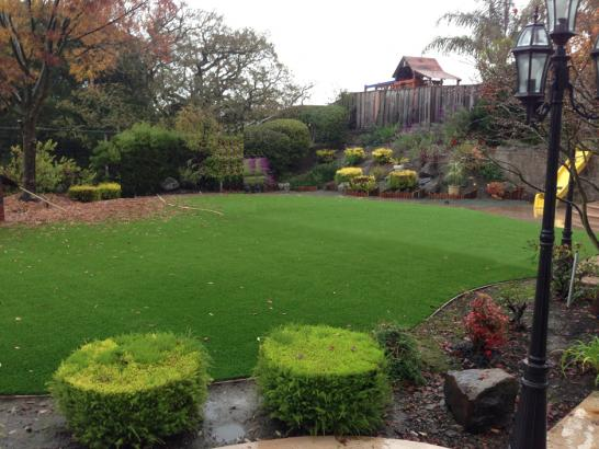 Artificial Grass Photos: Outdoor Carpet Outlook, Washington Gardeners, Backyard Landscaping