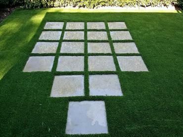 Artificial Grass Photos: Outdoor Carpet Satus, Washington Lawn And Landscape, Small Backyard Ideas