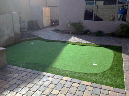 Artificial Grass Photos: Outdoor Carpet University Place, Washington Landscape Ideas, Backyard Landscape Ideas