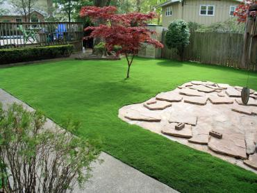 Artificial Grass Photos: Plastic Grass Cascade Valley, Washington Lawns, Backyard