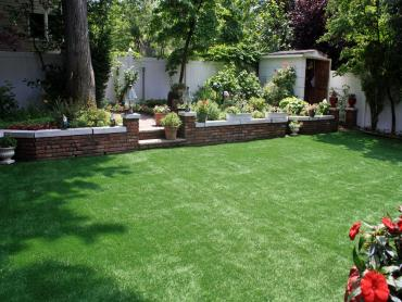 Plastic Grass Meadowdale, Washington Home And Garden, Backyard Makeover artificial grass