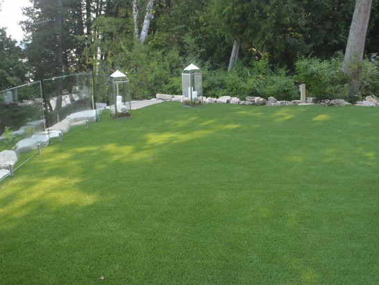 Artificial Grass Photos: Plastic Grass Port Hadlock-Irondale, Washington Rooftop, Backyard Design