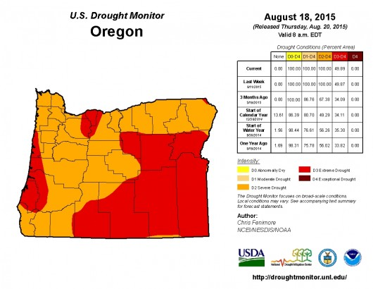 Artificial Grass | Shocking Climate Changes in Oregon: Drought Report