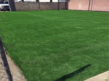 Artificial Grass Photos: Synthetic Grass Bryant, Washington Sports Turf