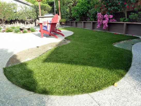 Artificial Grass Photos: Synthetic Grass Clarkston Heights-Vineland, Washington Dog Parks, Backyard Designs