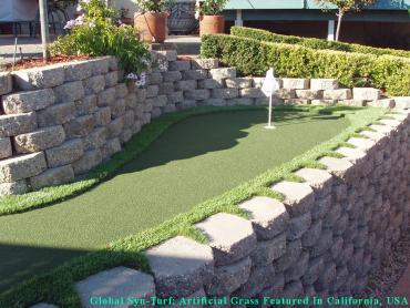 Synthetic Grass Cost Everett, Washington Putting Green Carpet, Backyard Landscaping Ideas artificial grass
